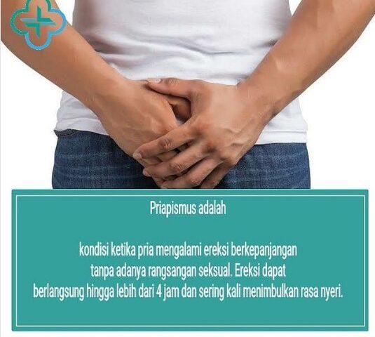 Priapismus