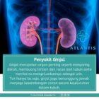 Penyakit Ginjal
